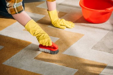 cropped image of woman cleaning carpet at home