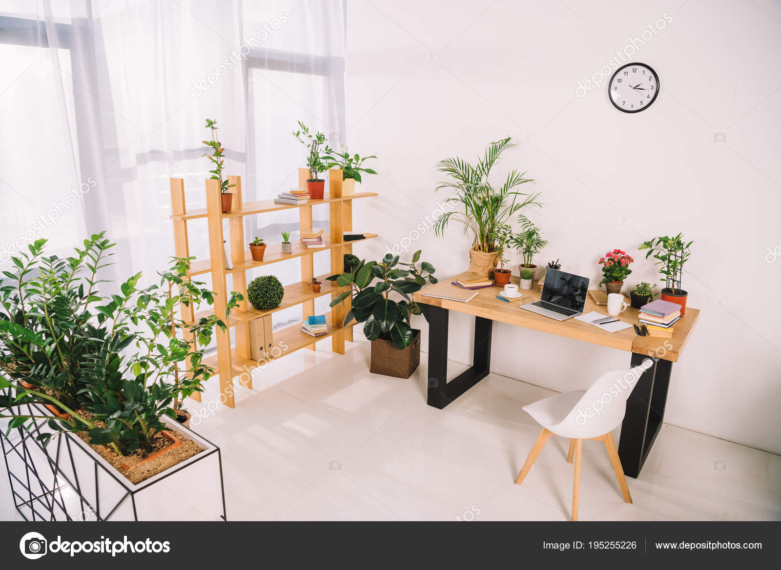 Planten Op Kantoor : Interieur van kantoor met groene planten u stockfoto