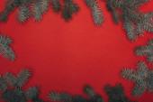 Fotografie horní pohled na vánoční rámeček se smrkovými větvemi na červené