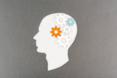 Top view of cut out white human head with colorful gears isolated on grey stock vector