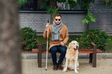 Blind man sitting on bench beside guide dog on street
