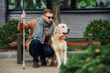 Blind man with walking stick hugging guide dog on street
