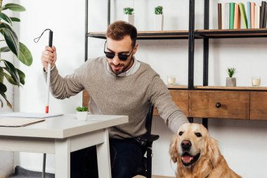 Blind man holding walking stick and petting golden retriever at home