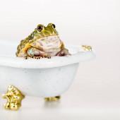 zblízka pohled na roztomilé zelené žáby v malé luxusní vany izolované na bílé