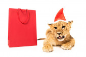 cute lion cub in santa hat near red shopping bags isolated on white
