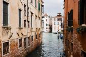csatorna és ősi épületek növényekkel Velencében, Olaszországban