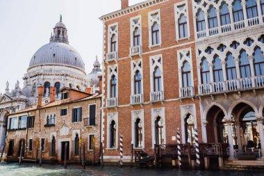Santa Maria della Salute church and ancient building in Venice, Italy stock vector