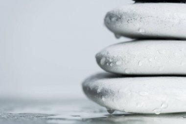 Macro shot of white zen stones in water drops on wet glass isolated on grey stock vector