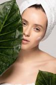 vonzó lány hidratáló krém az arcon és törölköző a fejen pózol zöld levelek, elszigetelt szürke