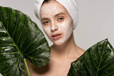 Attractive girl with cosmetic mask on face and towel on head posing with green leaves, isolated on grey stock vector