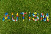 Top kilátás autizmus puzzle felirat zöld háttér