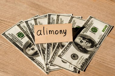 Paper with alimony lettering on dollar banknotes stock vector