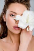 vonzó nő borító arc fehér virágzó virág elszigetelt szürke