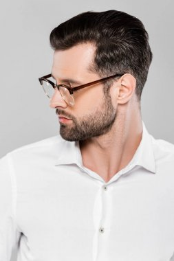 Bearded and handsome businessman in glasses isolated on grey stock vector
