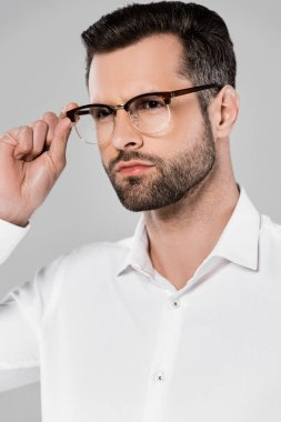 Bearded and handsome businessman touching glasses isolated on grey stock vector