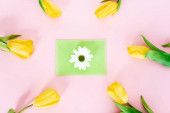 top view of green envelope with white chrysanthemum near yellow tulips on pink, mothers day concept