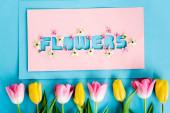horní pohled na žluté a růžové tulipány v blízkosti blahopřání s květinami nápisy na modré, Den matek koncept