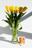 sunlight on yellow tulips in vase near gift box on white, mothers day concept