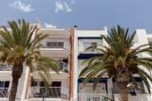 Nízký úhel pohledu na palmy v blízkosti budov s bílými fasádami v Katalánsku, Španělsko