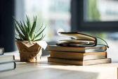 Fotografie Datailní pohled knih, zápisník s tužkou a květináči na dřevěný stůl