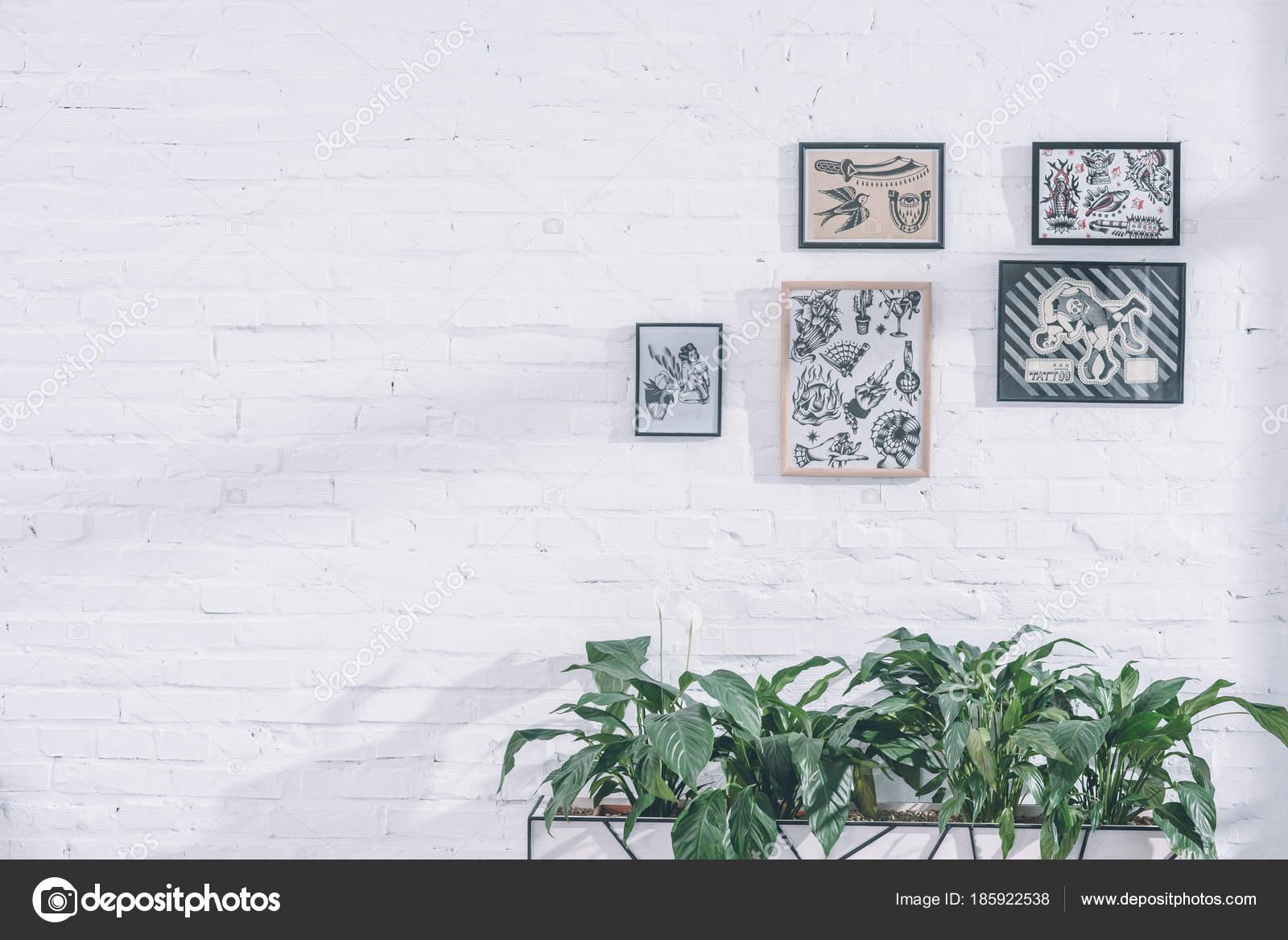 Wzory Tatuaży Ramkach Nowoczesne Studio Zdjęcie Stockowe