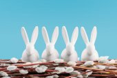 Fotografia conigli di Pasqua su amenti isolati sullazzurro