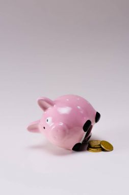 close up view of pink piggy bank and pile of coins isolated on lilac