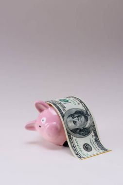 close up view of pink piggy bank with 100 dollar banknote isolated on lilac