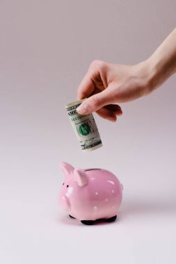 cropped shot of woman putting dollar banknote into pink piggy bank isolated on lilac