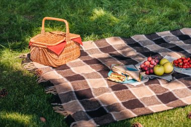 Picnic basket and fruits