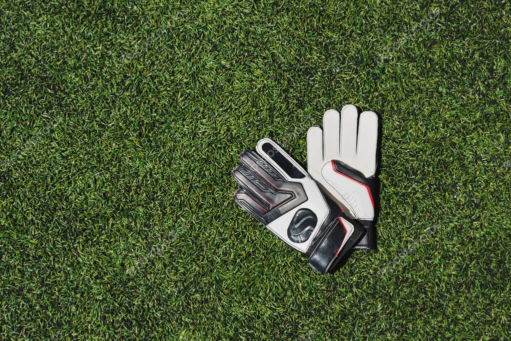 goalkeeper gloves on pitch