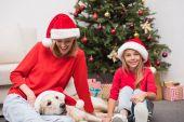 matka, Dcera a pes na Vánoce