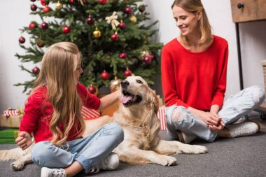 Family with dog at christmastime