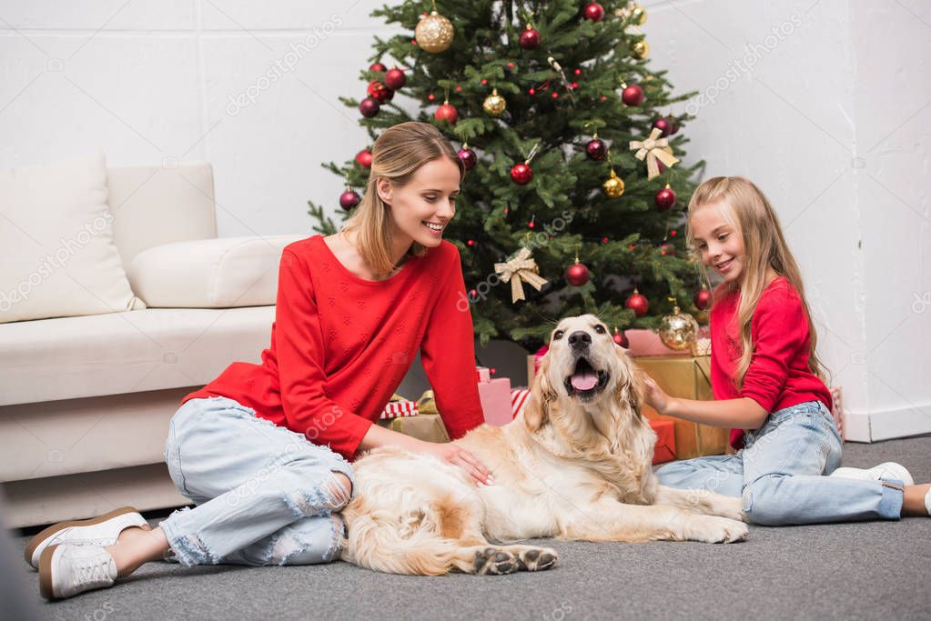 family with dog at christmas tree
