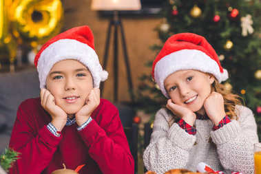 Young brother and sister in santa hats looking at camera stock vector