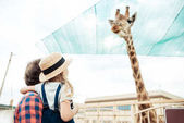 Photo family looking at giraffe in zoo