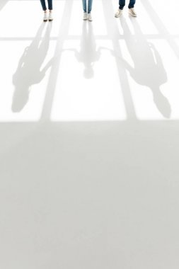 Low section of family standing together and shadows on white stock vector