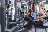 Photo young sportive women working out at gym