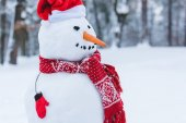 Zavřete pohled sněhulák v santa čepice, šála a rukavice winter park
