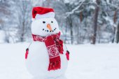 Fotografie Zavřete pohled sněhulák v santa čepice, šála a rukavice winter park