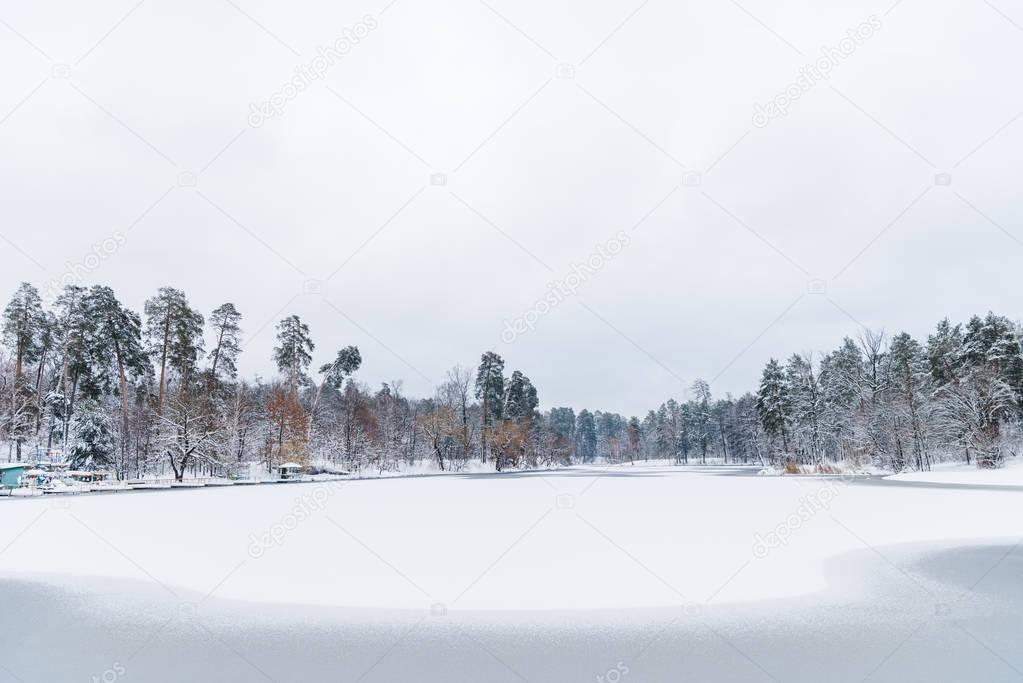 beautiful landscape with snow covered trees and frozen lake in winter park