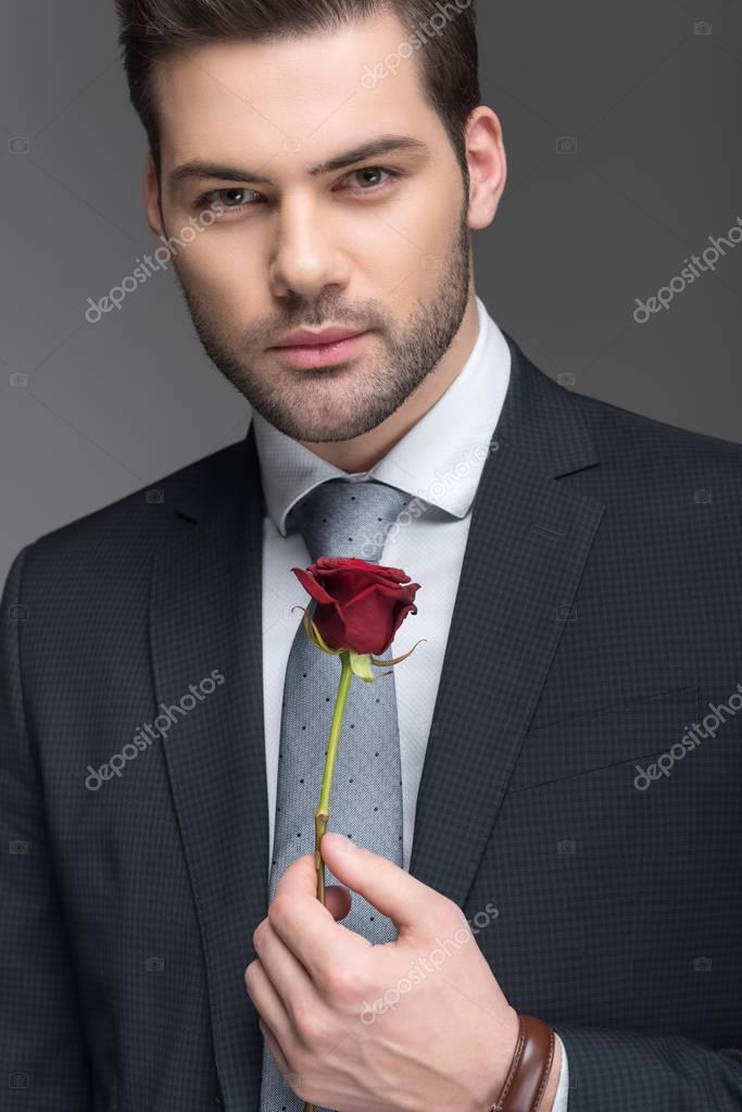 handsome man in suit holding red rose, isolated on grey
