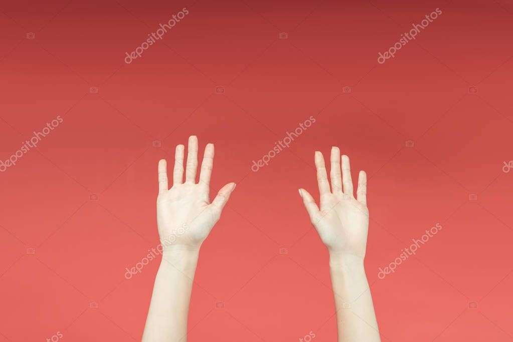 cropped view of female hands raised up, isolated on red