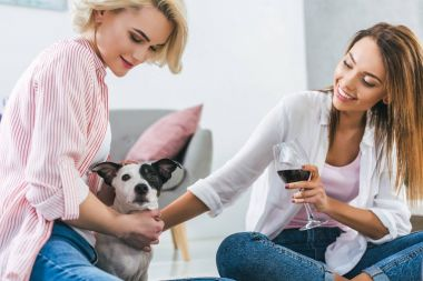 beautiful girls with dog and glass of red wine at home