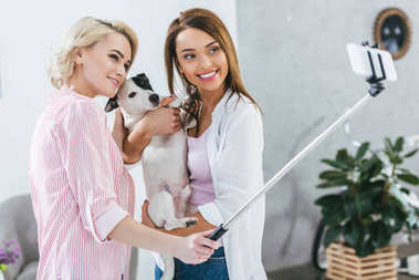 attractive girls taking selfie with jack russell terrier dog