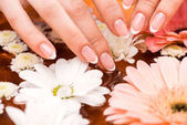 Photo cropped view of woman making spa procedure with flowers for nails
