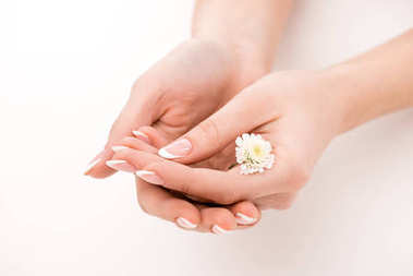 partial view of girl with natural manicure holding daisy, isolated on white