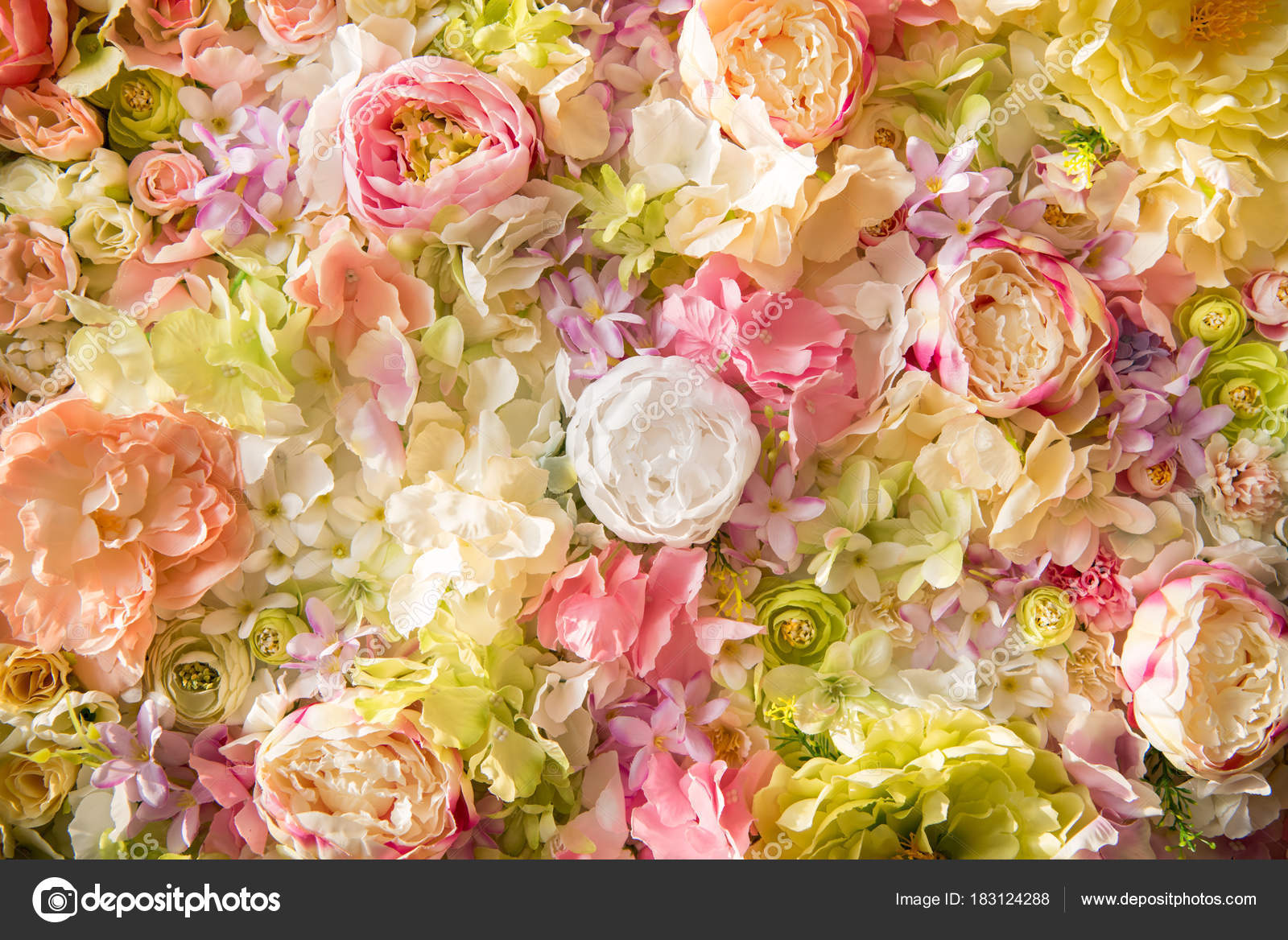 Close View Beautiful Floral Background Tender Elegant Flowers