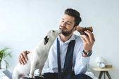 Fotografie Geschäftsmann Muffin Essen und sitzen auf dem Bett mit jack-Russell-terrier
