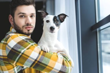bearded man holding jack russell terrier dog and standing at window